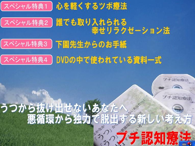 2010y01m16d_225636890.jpg